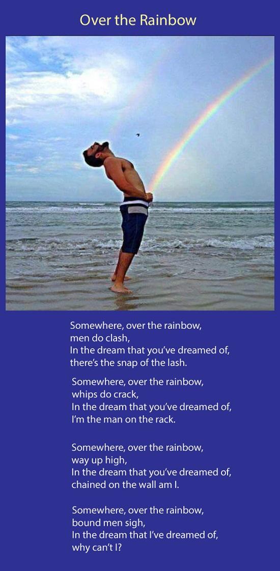 over the rainbow fin